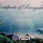 Certificate-Joanna